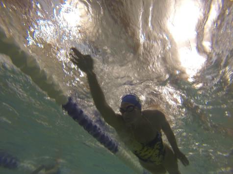 Swim team looks forward to post-season success