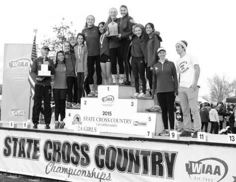 Cross country dashes into two top finishes at state