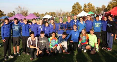 Big leadership guides cross country into postseason