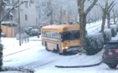 School Bus slides down Newcastle Highlands