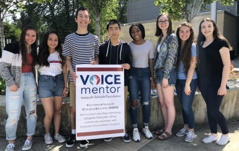 VOICE Mentor Program