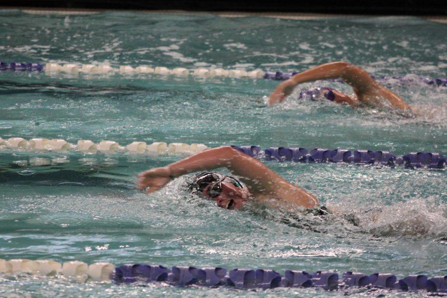 Girls+swim+and+dive